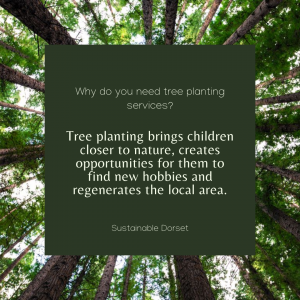Tree Planting Services 3